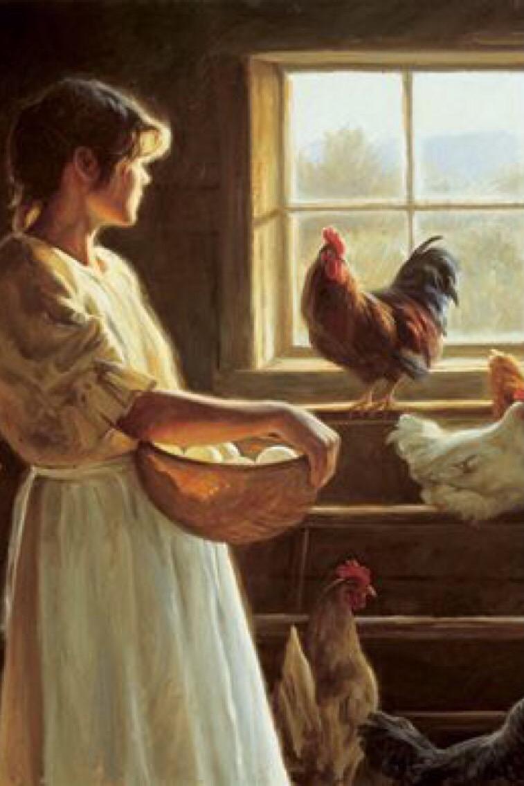 IMG_chickens